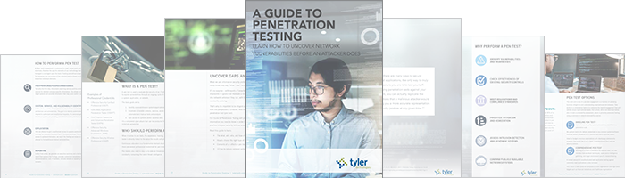 sage-advice-guide-to-penetration-tests-image